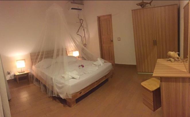 felidhoo_guesthouse_room