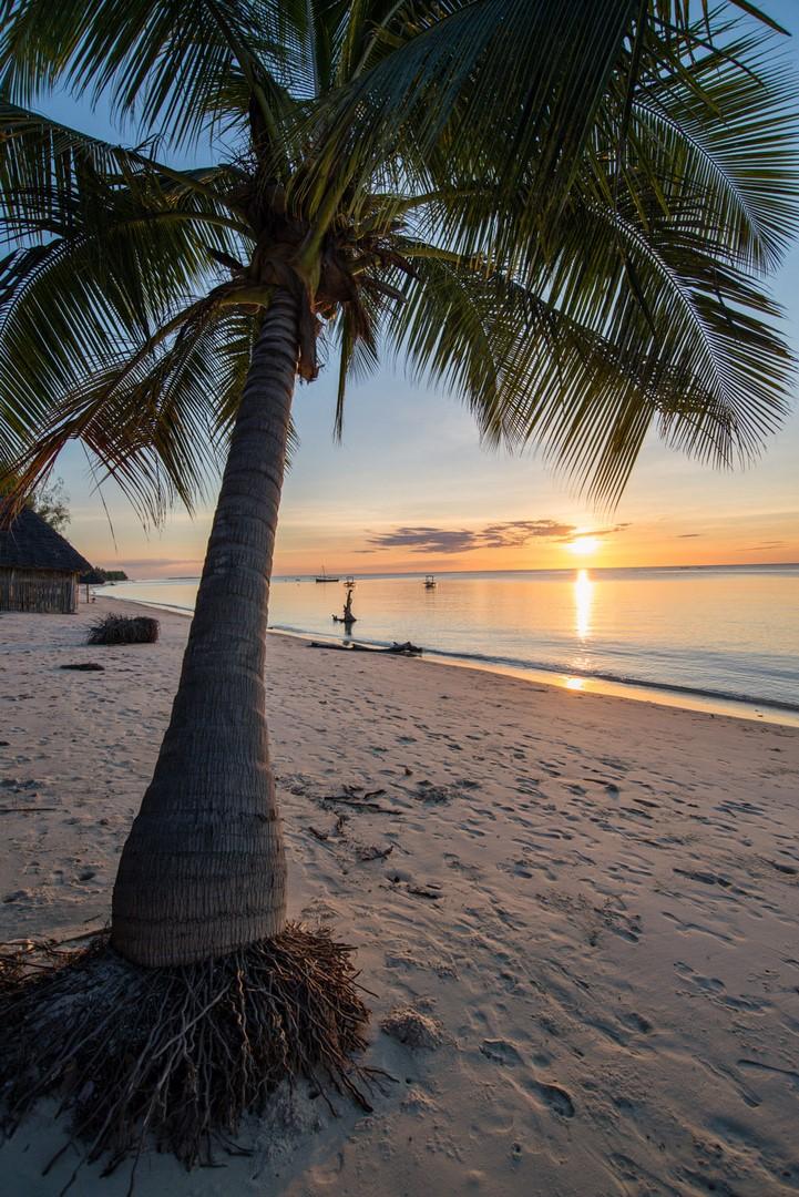spiaggia_tramonto_mafia_tanzania